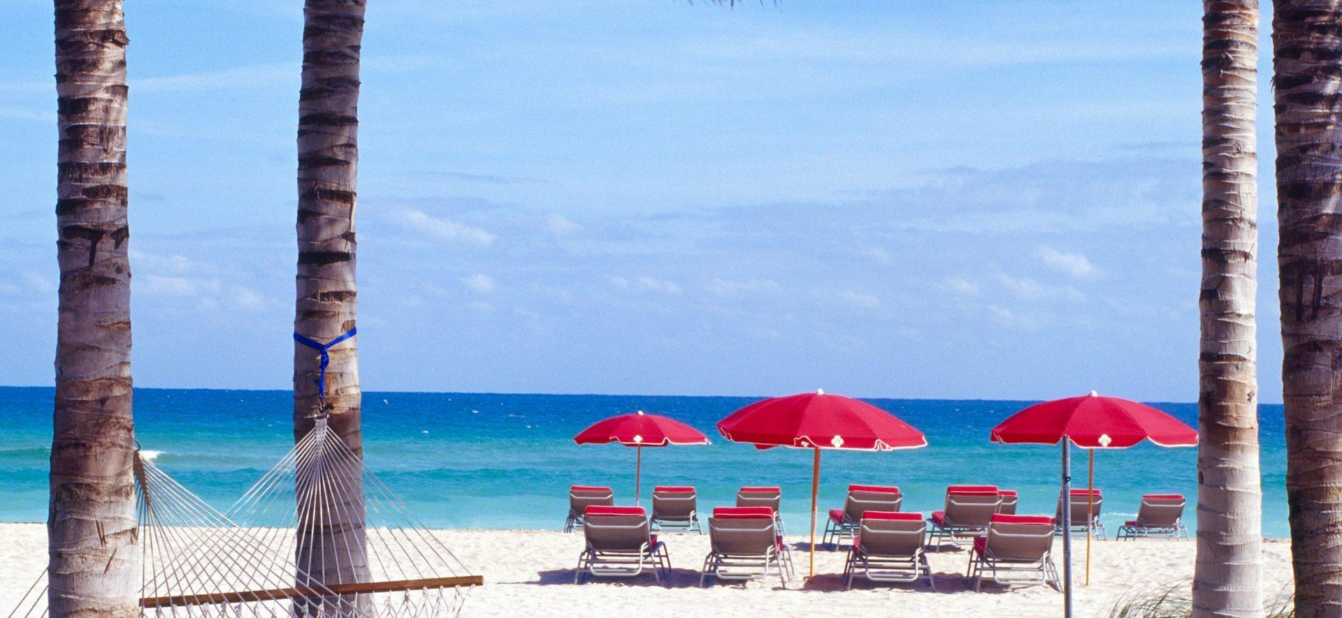 Miami Beach Hammocks